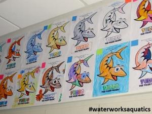 Waterworks_Aquatics_Irvine_ColorContest1